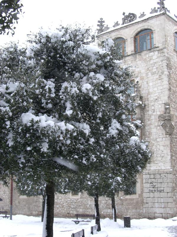 jimmy230709-Casa Cordón nieve