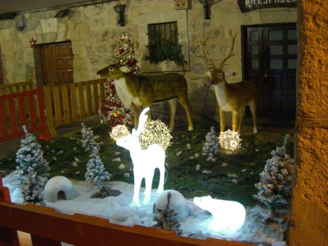jimmy060114-Burgos Navidad 2013-03