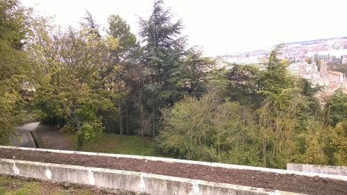 jimmy091114-otoño burgos17