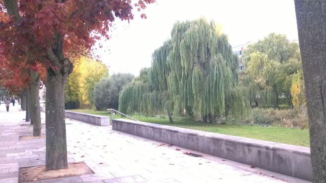 jimmy071214-otoño Burgos15