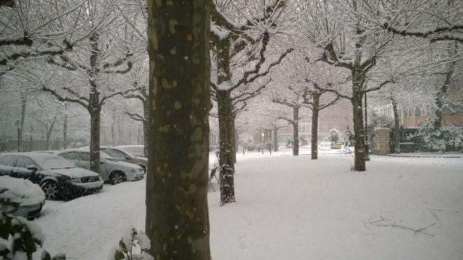 rincon220115-nevada Burgos01