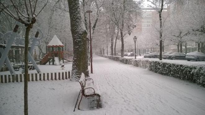 rincon220115-nevada Burgos02
