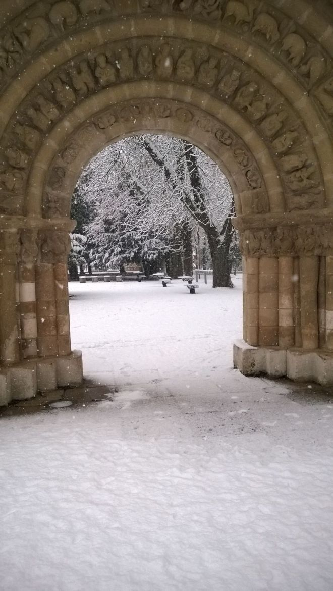 rincon220115-nevada Burgos05