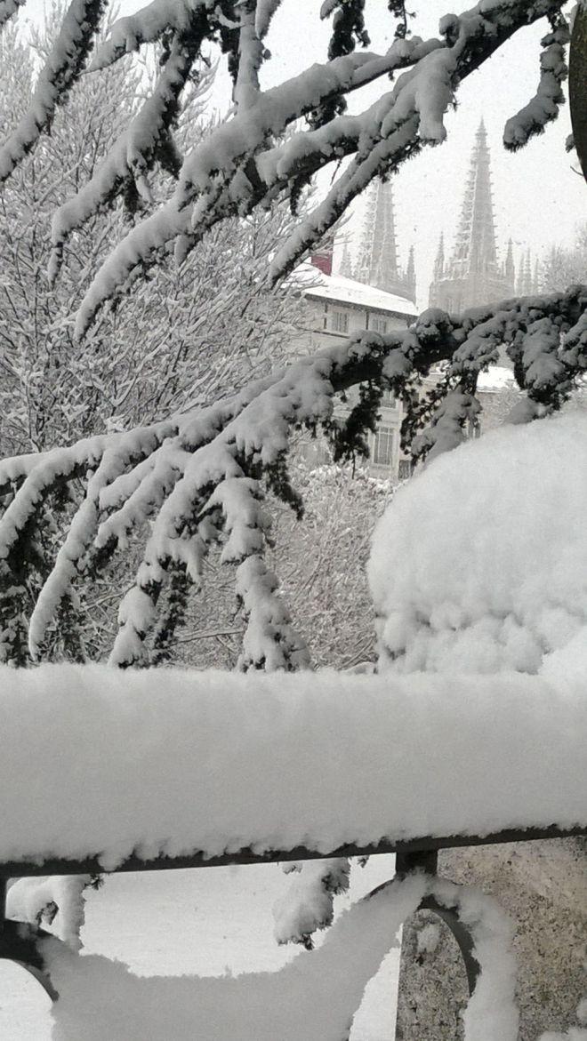 rincon220115-nevada Burgos13