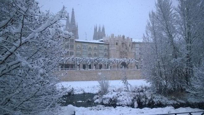 rincon220115-nevada Burgos15