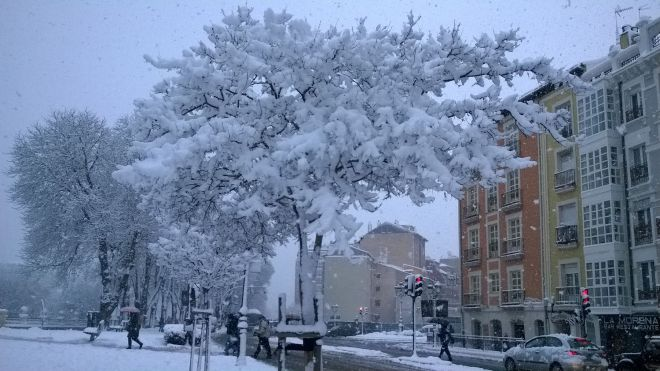 rincon220115-nevada Burgos16