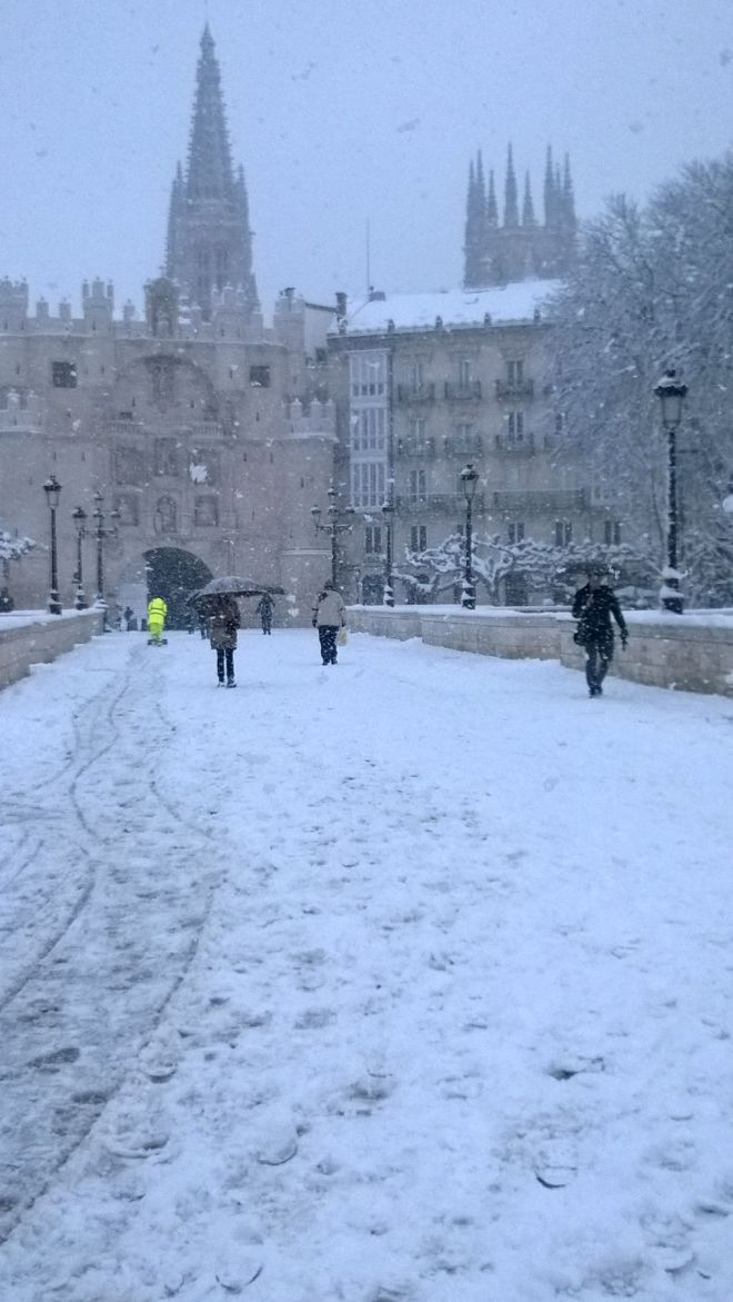 rincon220115-nevada Burgos17