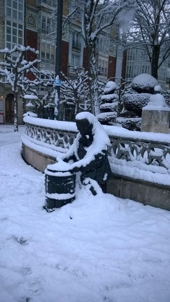 rincon220115-nevada Burgos20