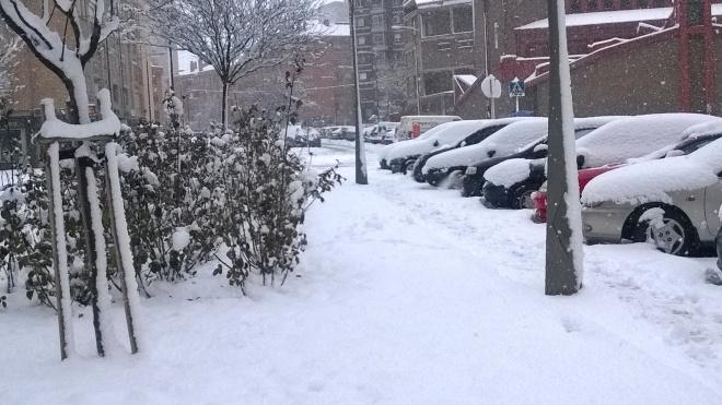 rincon220115-nevada Burgos33