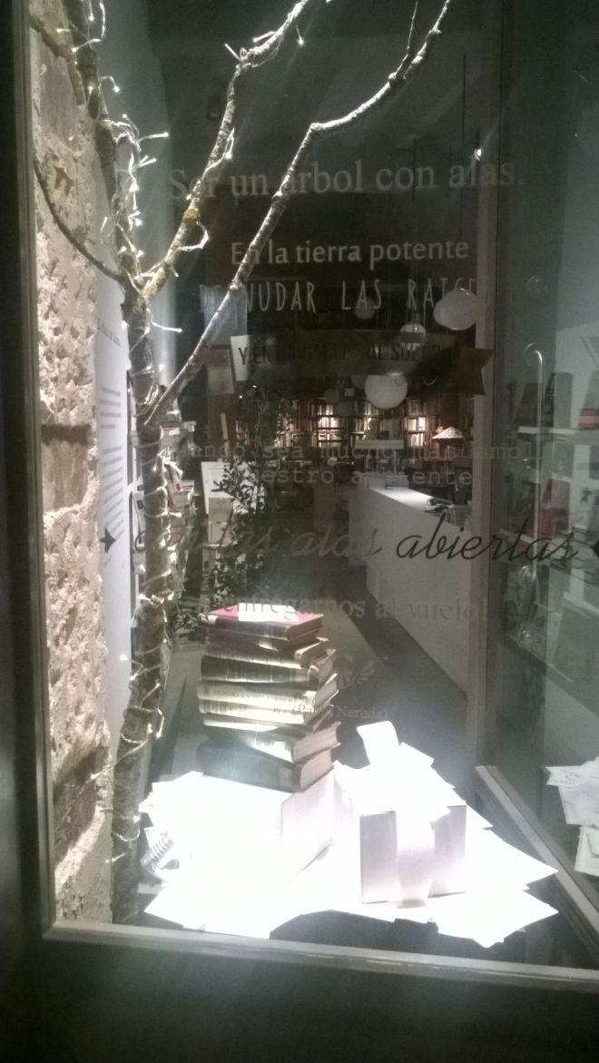 rincon061216-navidad-burgos-2015_14